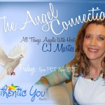 TheAngelConnectionBanner_CJ
